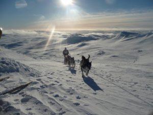 Kahles Fjäll in Nordschweden